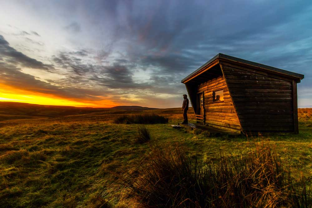 Downsizing Your Domain: What's Behind The Tiny House Movement?